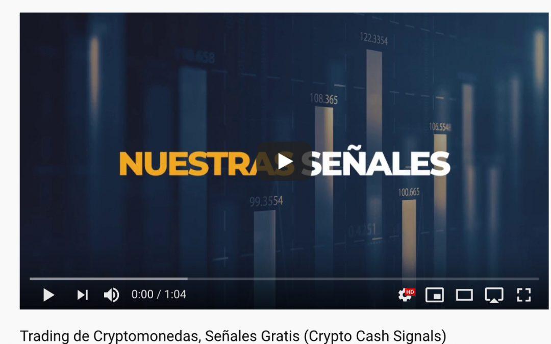 Crypto crash signals: una estafa lamentable, muy lamentable